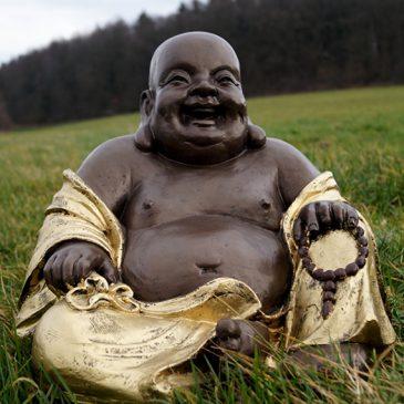 Der dicke Buddha