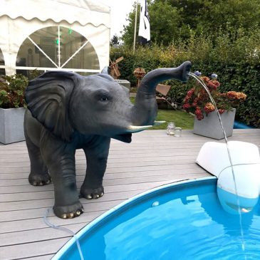 Der Wasserelefant