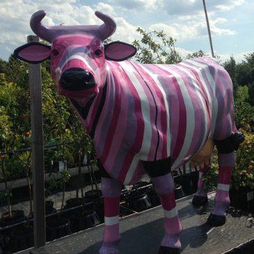 Die gestreifte Kuh